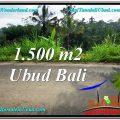 FOR SALE Beautiful PROPERTY LAND IN UBUD TJUB556