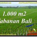 Magnificent PROPERTY TABANAN 1,000 m2 LAND FOR SALE TJTB307