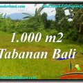 Exotic PROPERTY 1,000 m2 LAND FOR SALE IN Tabanan Selemadeg TJTB311