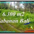 Exotic PROPERTY LAND FOR SALE IN TABANAN BALI TJTB313
