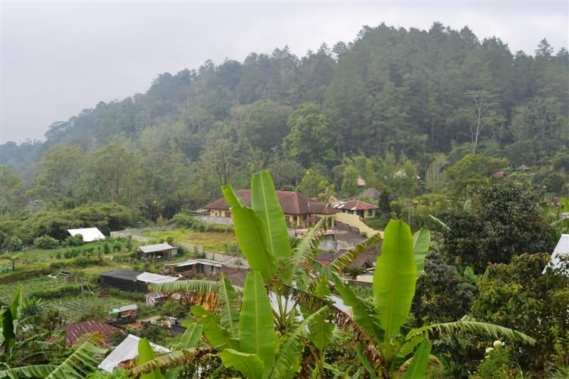 Land for sale in Bedugul Bali