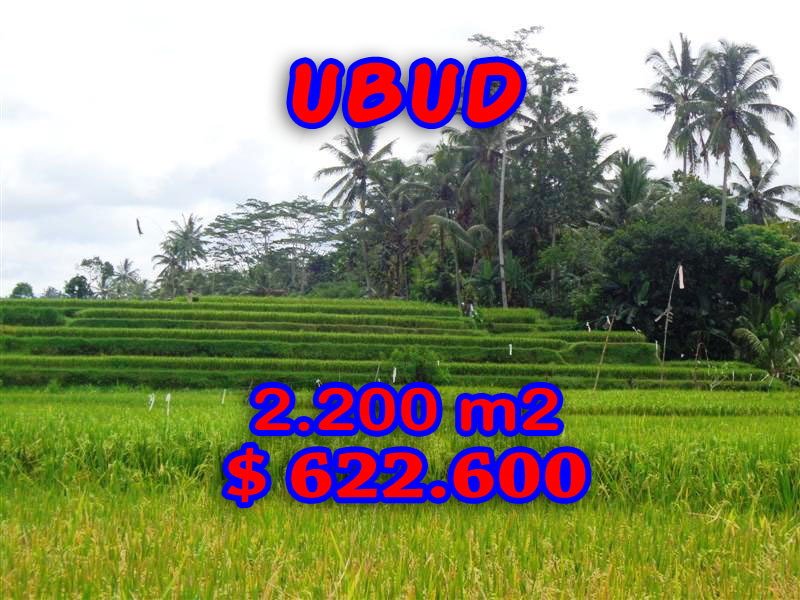 Land in Ubud Bali For sale 22 Ares with Close to Ubud Center