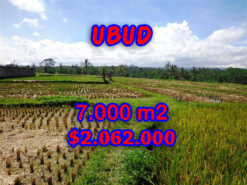 Land in Bali for sale, attractive view in Ubud Central Bali – TJUB247