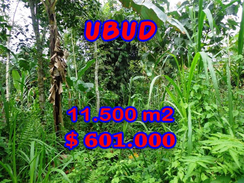 Land for sale in Bali, wonderful view in Ubud Bali – TJUB260