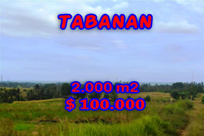 Land in Bali for sale, great view in Tabanan Bali – TJTB057