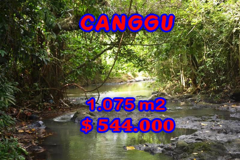 Land-for-sale-in-Canggu-land