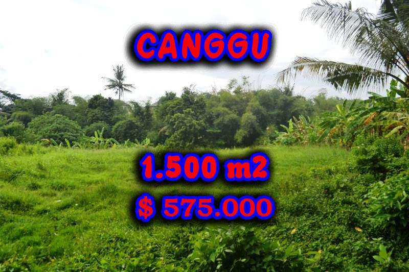 Astonishing Property in Bali, land in Canggu Bali for sale – TJCG104
