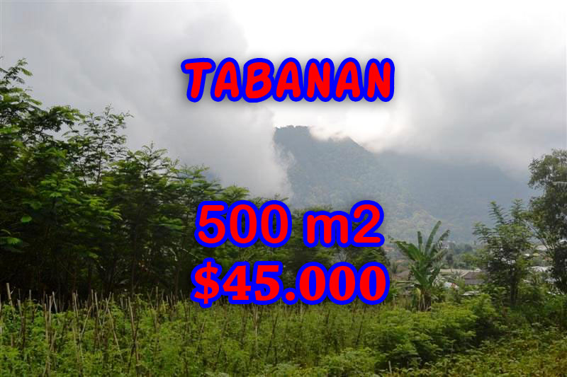 Land for sale in Bali, Magnificent view in Tabanan Bedugul Bali – TJTB063