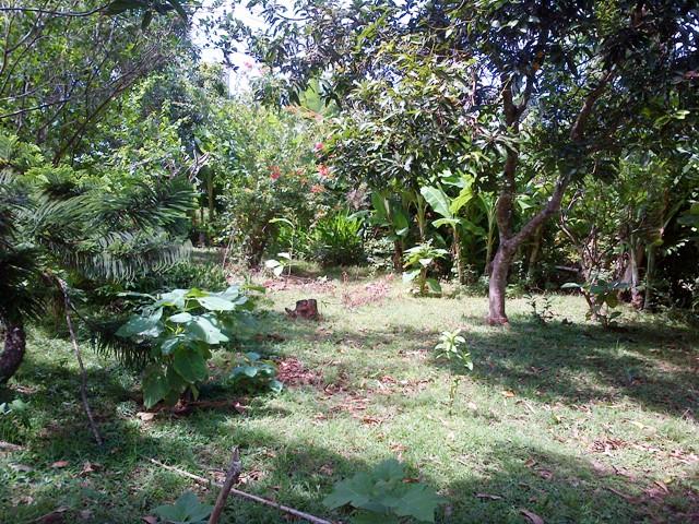 Land for sale in Jimbaran