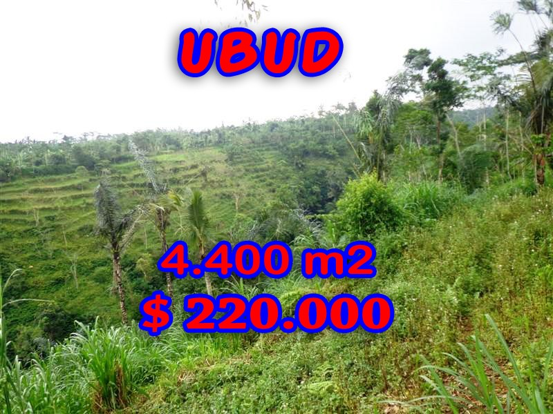 Stunning Property for sale in Bali, land for sale in Ubud Bali – 4.400 sqm @ $ 50