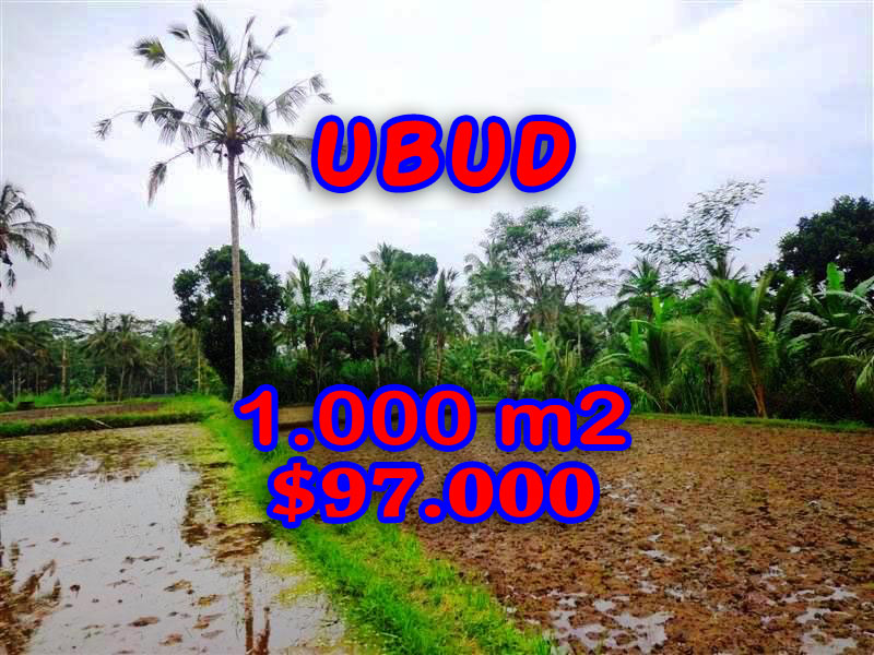 Exceptional Property in Bali, Land in Ubud Bali for sale – TJUB255