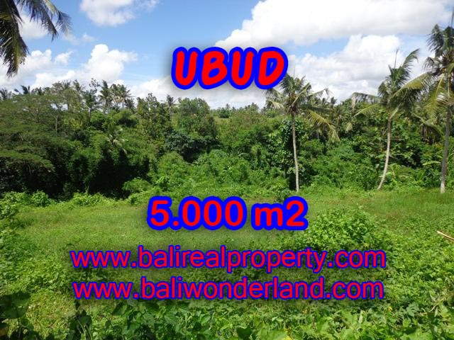 Fantastic Land for sale in Bali, paddy field and river view in Central Ubud – TJUB353