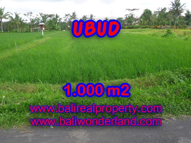 Land for sale in Bali, astonishing view in Ubud Tampak siring Bali – TJUB345