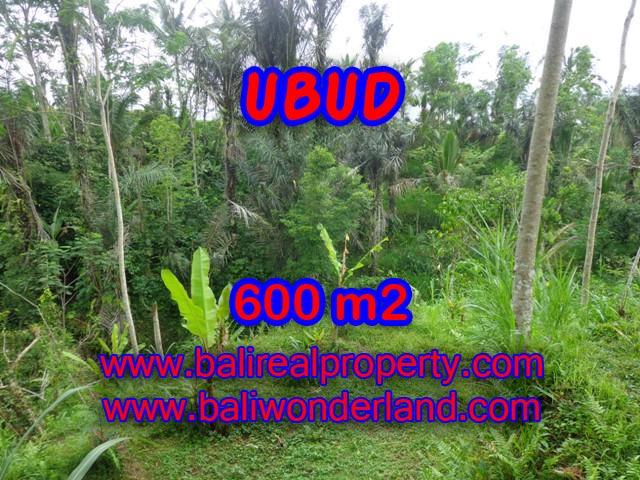 Land in Bali for sale, astounding view in Ubud Bali – TJUB346