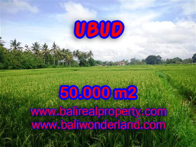 Land in Bali for sale, extraordinary view in Central Ubud – TJUB351