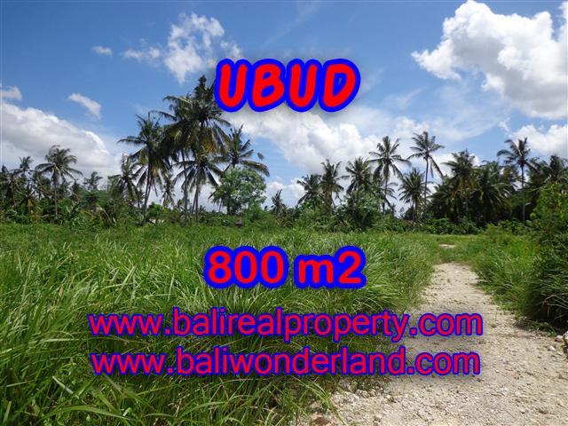 Land in Bali for sale, fantastic view in Ubud Bali – TJUB352