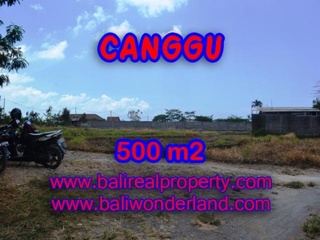 Jual tanah di Canggu