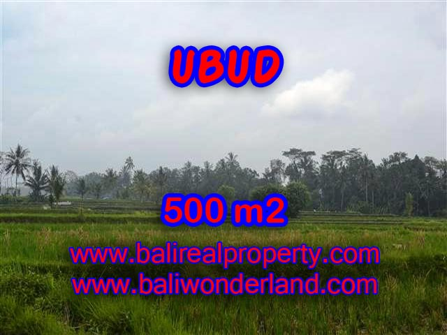 Beautiful Land for sale in Bali, Mountain and paddy field view in Ubud Bali – TJUB363