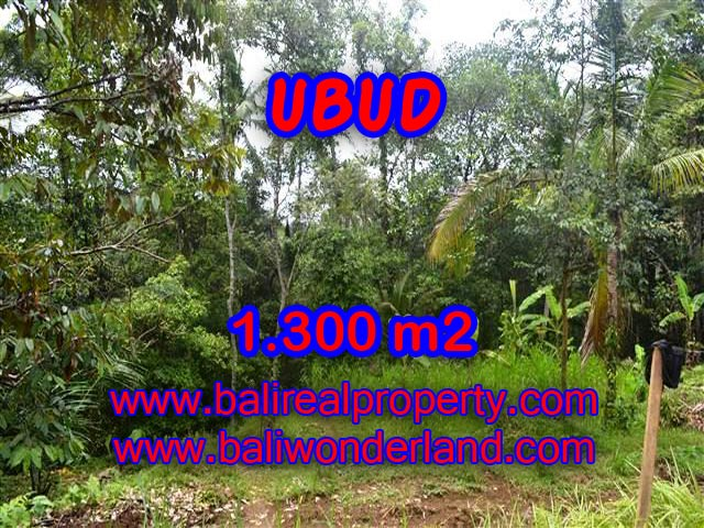 Amazing Land in Bali for sale in Ubud Pejeng Bali – TJUB362