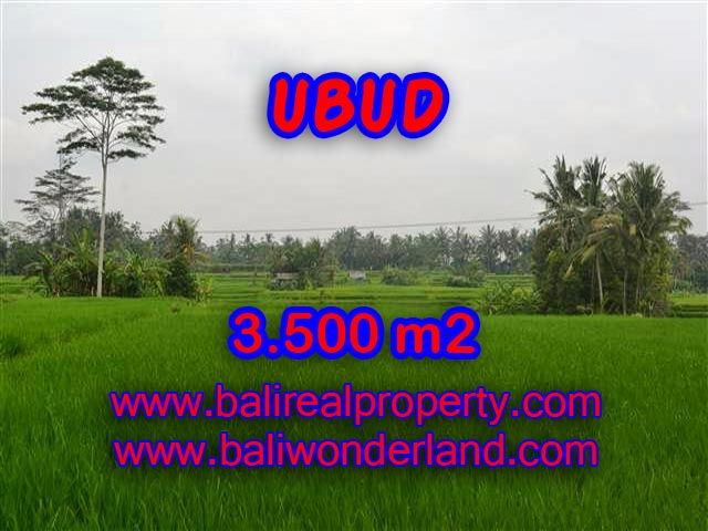 Land in Bali for sale, great view in Ubud Bali – TJUB361