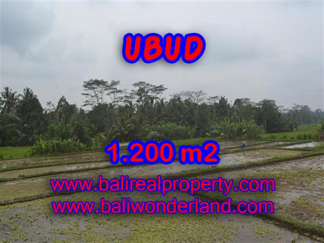 Land for sale in Bali, wonderful view in Ubud Bali – TJUB360