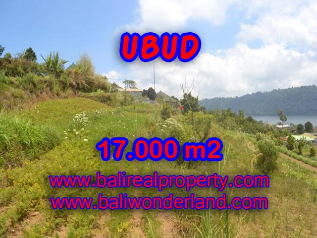 Land for sale in Bali, impressive view in TABANAN BEDUGUL – TJTB082