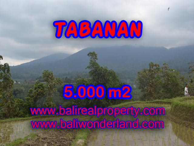 Land for sale in Tabanan Bali, Wonderful view in JATILUWIH TABANAN – TJTB079