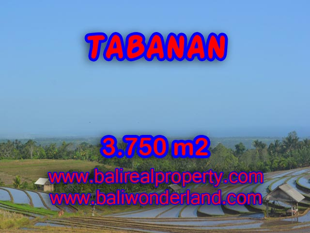 Land for sale in Bali, spectacular view in Tabanan Bali – TJTB074