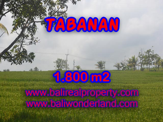 Land for sale in Bali, Magnificent view in SOKA TABANAN Bali – TJTB083