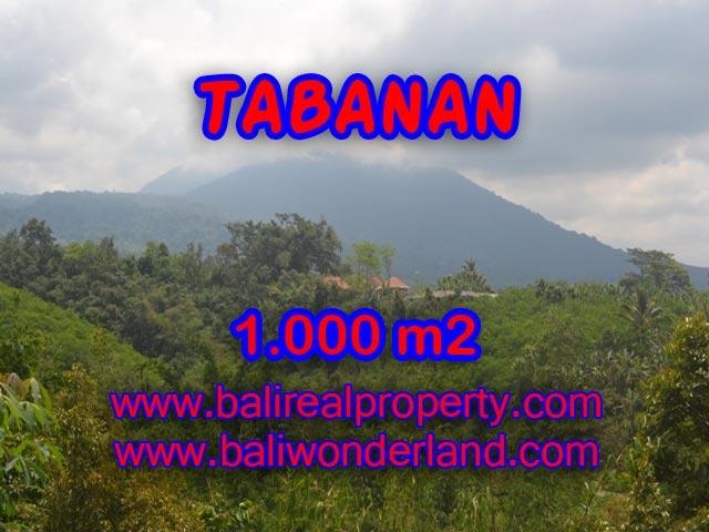 Land in Bali for sale, Stunning view in Tabanan Bali – TJTB078