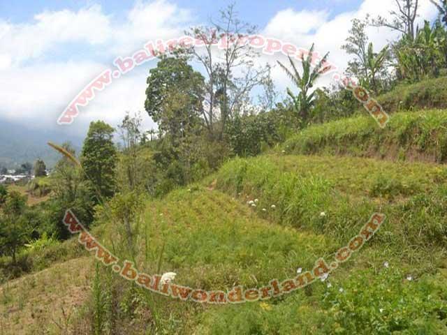Dijual tanah ( Land for sale ) di Tabanan Bali