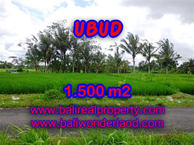 Land for sale in Ubud Bali, Astounding view in Ubud Tampak siring – TJUB369