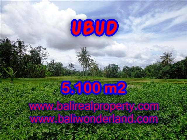 Land for sale in Ubud Bali, Unbelievable view in Ubud Tegalalang – TJUB368