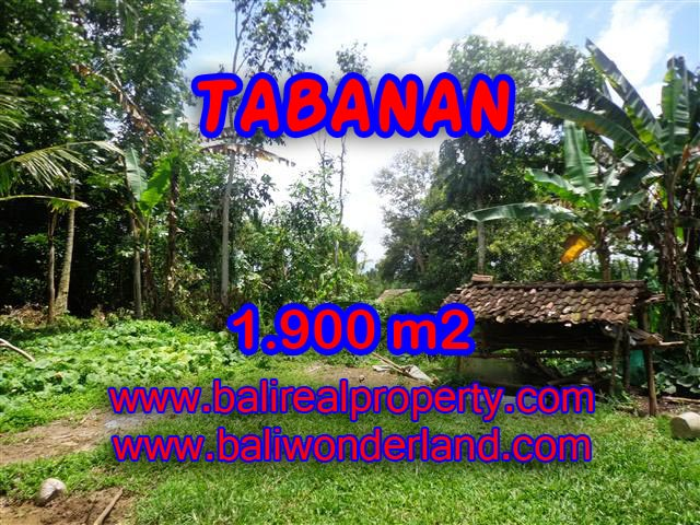 Beautiful Property for sale in Bali, land for sale in Tabanan – TJTB091