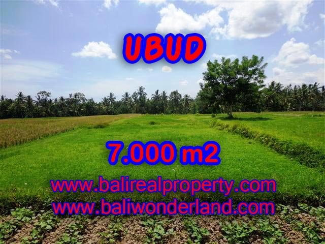 Land in Ubud for sale, Stunning view in Ubud Center Bali – TJUB381