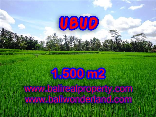 Land for sale in Ubud Bali, Wonderful view in Ubud Center – TJUB383