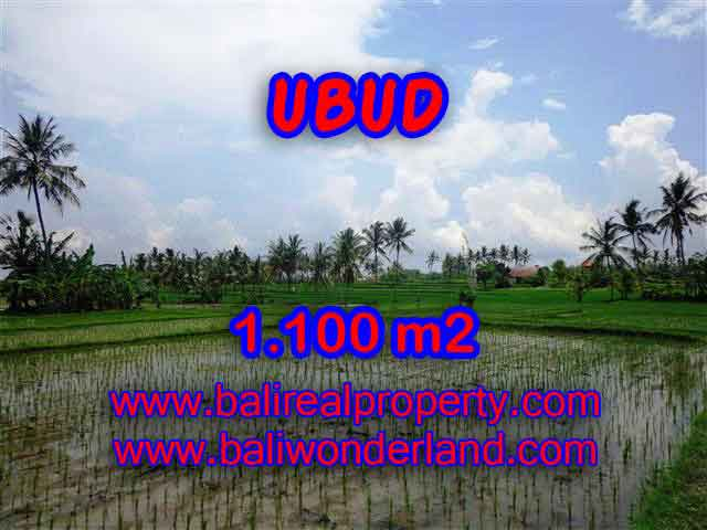 Land in Ubud Bali for sale, nice view in Ubud Center Bali – TJUB376