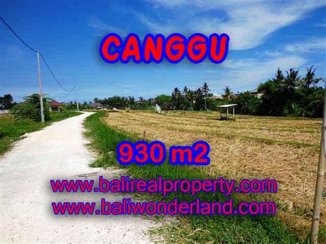 Astonishing Property for sale in Bali, LAND FOR SALE IN CANGGU Bali – TJCG146