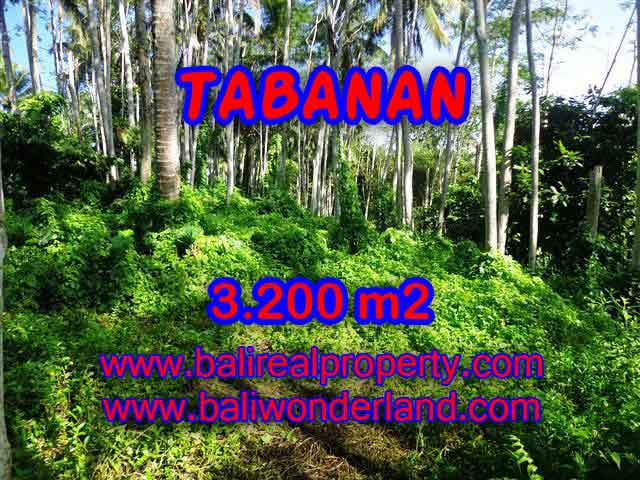 Interesting Land for sale in Tabanan Bali, Mountain and ricefields and river view in Tabanan Penebel – TJTB120