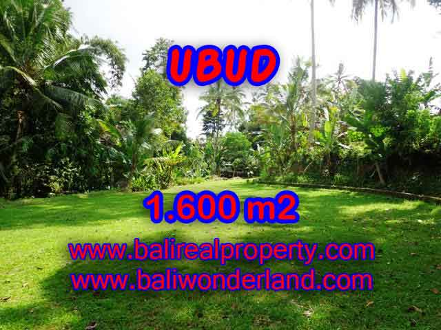 Astounding Property in Bali for sale, Rice fields and river view land in Ubud Bali – TJUB416