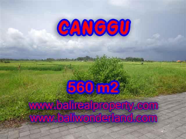 Land in Bali for sale, Stunning view in Canggu Bali – TJCG138