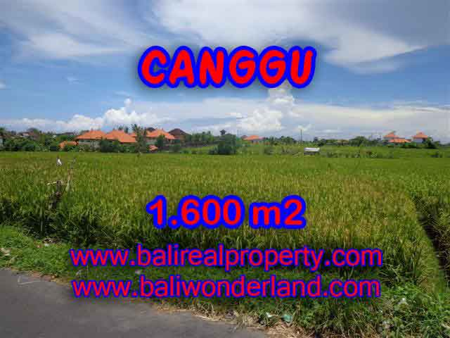 Land in Bali for sale, Outstanding view in Canggu Cemagi Bali – TJCG139