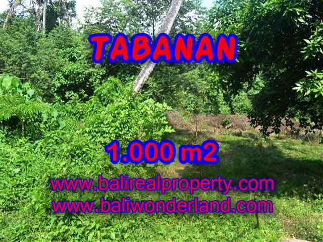 Land in Tabanan for sale, Amazing view in Tabanan kediri Bali – TJTB114
