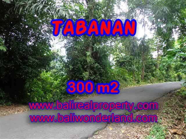 Land for sale in Tabanan Bali, Great view in Tabanan Selemadeg – TJTB116