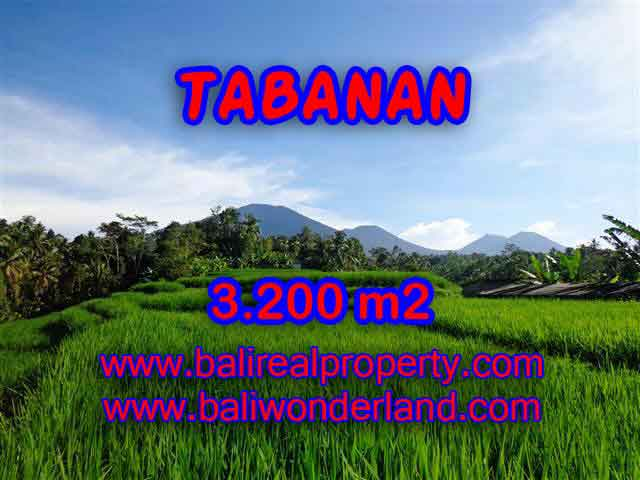 Land in Tabanan Bali for sale, Outstanding view in Tabanan Penebel – TJTB118