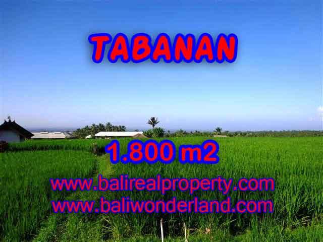 Land in Tabanan for sale, Stunning view in Tabanan Penebel Bali – TJTB119