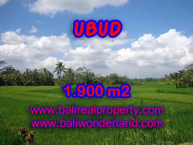 Land for sale in Bali, magnificent view Ubud Bali – TJUB403