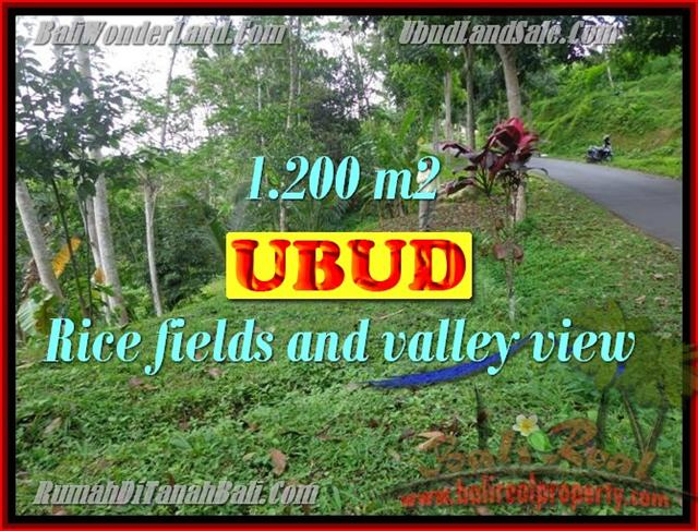 Exotic Property for sale in Bali, LAND FOR SALE IN UBUD Bali – TJUB422