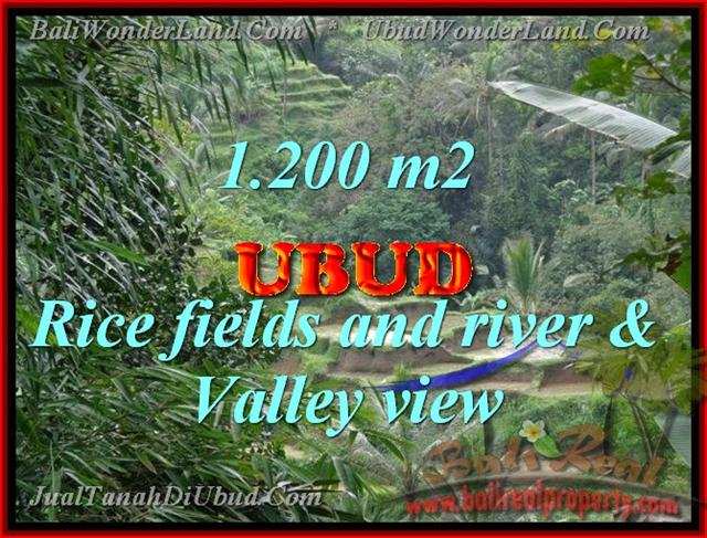 Property in Bali for sale, Fantastic view in Ubud Tegalalang – TJUB420