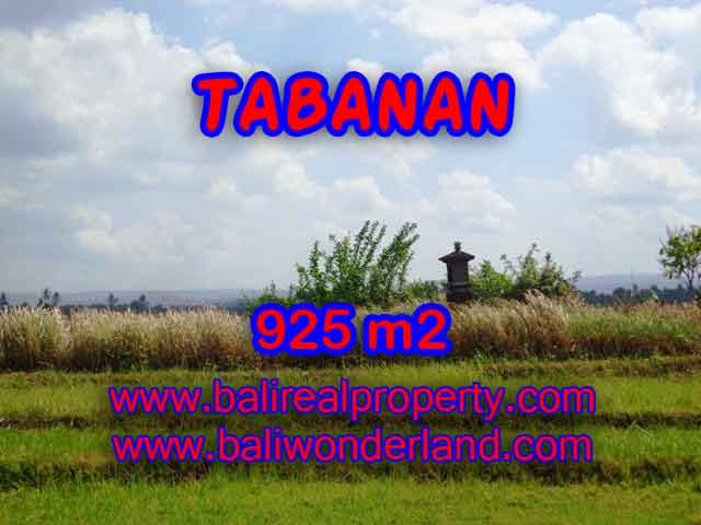 Fantastic Land for sale in Bali, paddy fields, mountain and ocean view in Tabanan selemadeg– TJTB135